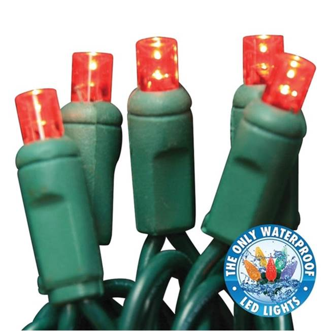 Miami Home Centers Holiday Bright Lights LEDBX-WA50-RD6 Light Set