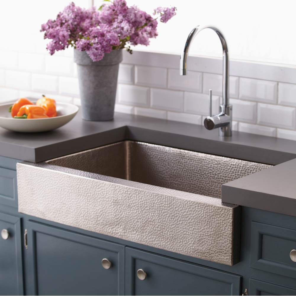 Native Trails Paragon Kitchen SInk in Brushed Nickel